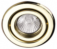 Pressed Steel Gimbal Downlight (AGU10G - various finishes)